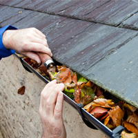 Gutter Cleaning Dulwich