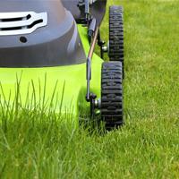 Lawn Mowing Dulwich