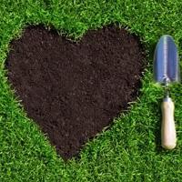 Lawn Repair Dulwich